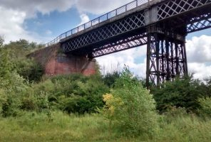 Bennerley viaduct - grassy